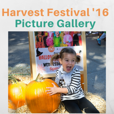 Harvest Festival'16 Picture Gallery