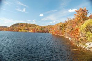 Best Places to See Fall Colors and Foliage Near Jersey City