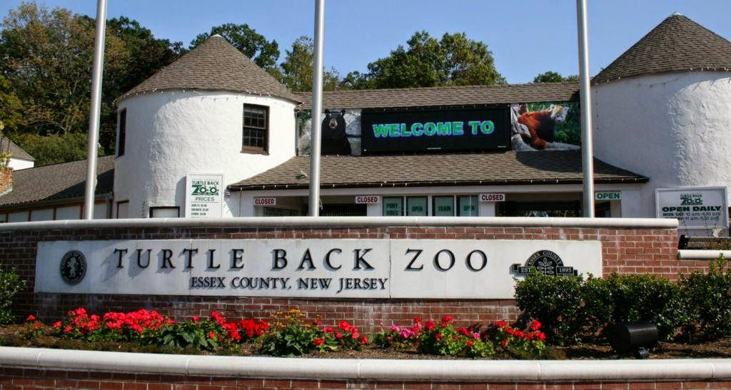 The best zoos and aquariums near Jersey City