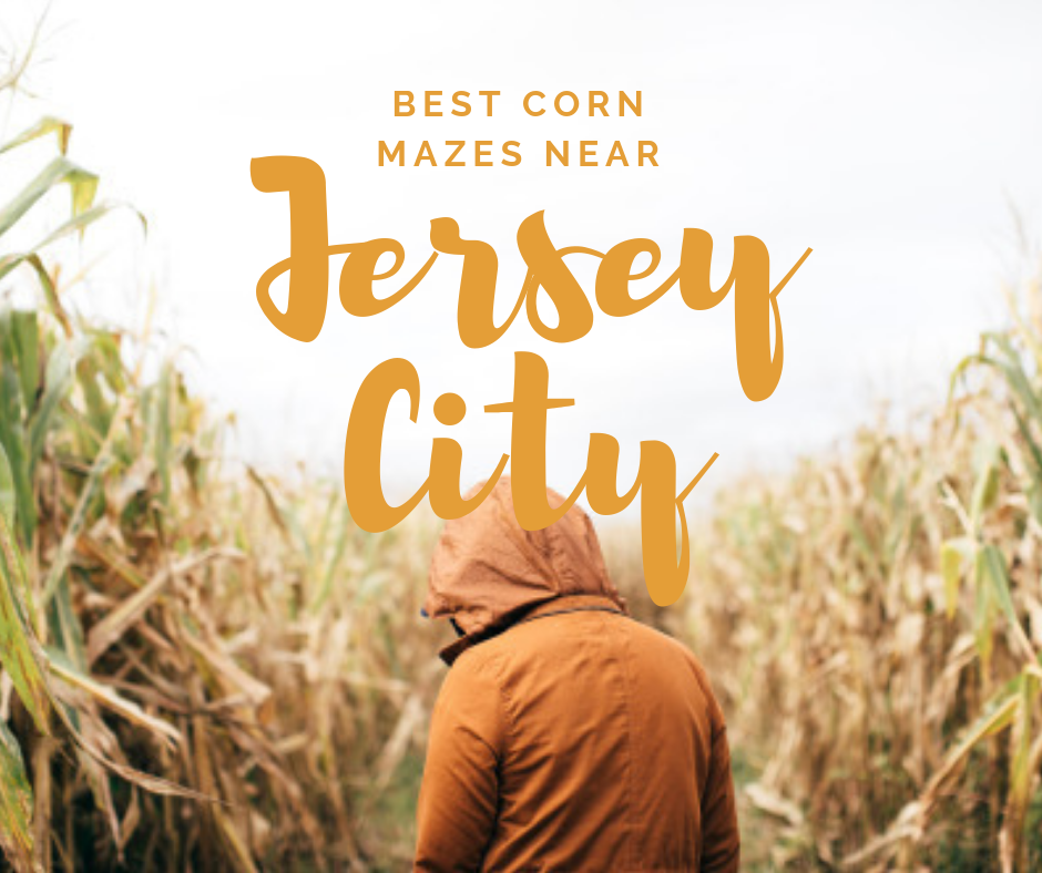 Best Corn Mazes to Visit this Fall near Jersey City